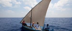 Sailing Dhoni